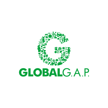 Insalatine certificate GLOBAL GAP