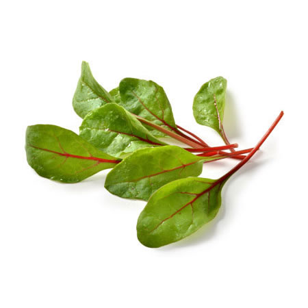 lettuce red chard